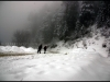 a-pleasant-snow-walk-around-shimla