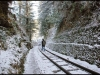 shimla-railway-track-frozen