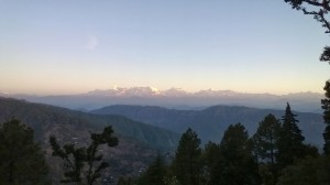 Gangan's Recollections from Binsar Trip, Uttrakhand