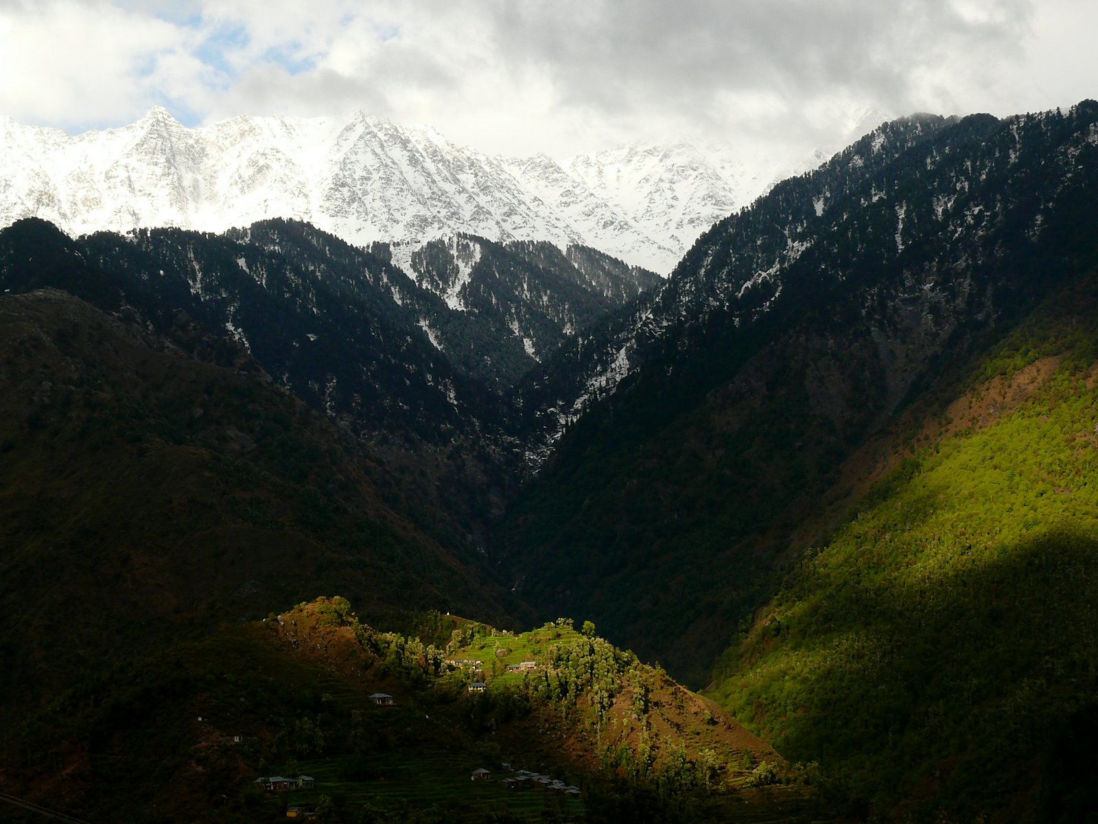 Himalayan National Park_3