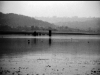 Bathuye Di Ladi - Pong Dam