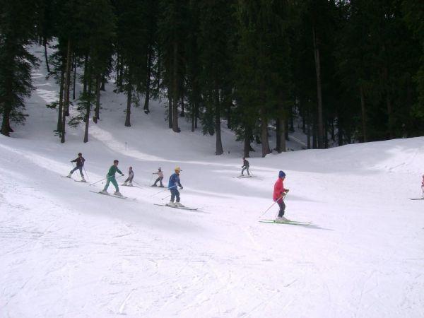 Narkanda Skiing